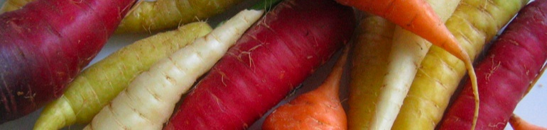 Genève's Kitchen header image 4